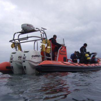 Farne Islands Trip